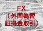 FX(外国為替証拠金取引)でオンライン投資